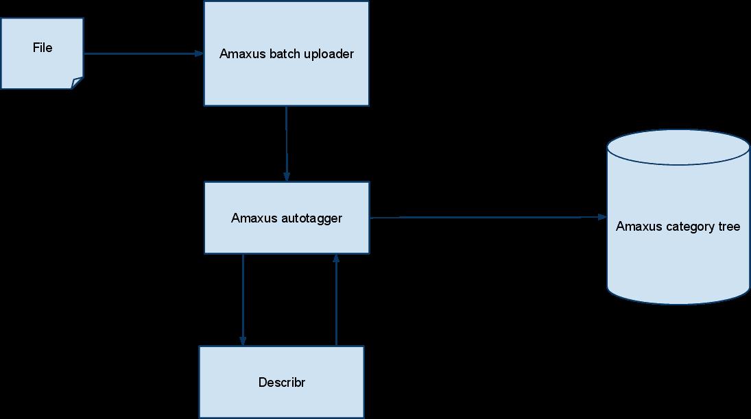 How Describr is used in Amaxus