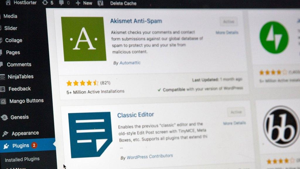 Screenshot of plugin options on a WordPress site